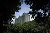 The humans are coming (Vinifontess) Tags: city forest architecture trees building sky frame nikon d3200 1855mm nature urban