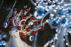 Christmas on A Great Street, Orchard Road, Singapore 2016 (gintks) Tags: gintaygintks singapore singaporetourismboard singapur sg51 2016 celebration christmasonagreatstreet merrychristmas orchardroad ornaments ion paragon orchardcentral wismaatria yoursingapore exploresingapore lightup