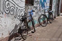Kolkata 24-09-2016-80 (SaVo Fotografie www.savofotografie.wordpress.com) Tags: kolkata india kalighat kali temple