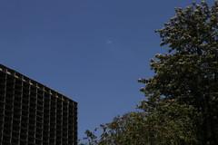 Parque do Ibirapuera (quanaval_sp) Tags: parque ibirapuera sp sãopaulo sampa paisagem landscape alesp assembleialegislativa moon