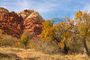 The Fall of Vegas #2 (Pete Foley) Tags: lasvegas whyimovedtovegas happythanksgiving autumn calicobasin nevada overtheexcellence littlestories picswithsoul