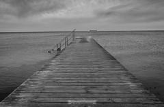 DSC00218 (grahedphotography) Tags: resundsbron resund oresund sweden swe denmark a7ii a7mk2 nature natur water ocean hav bridge beach blackandwhite grey malm limhamn