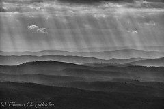 Rays and Ridges (travelphotographer2003) Tags: fall autumn weather clouds sunrays highlandscenichighway route150 nationalscenicbyway pocahontascounty westvirginia usa appalachianmountains alleghenymountains appalachia beautyinnature exploration freshness idyllic purity relaxation tranquilscene blackwhite bw ridges