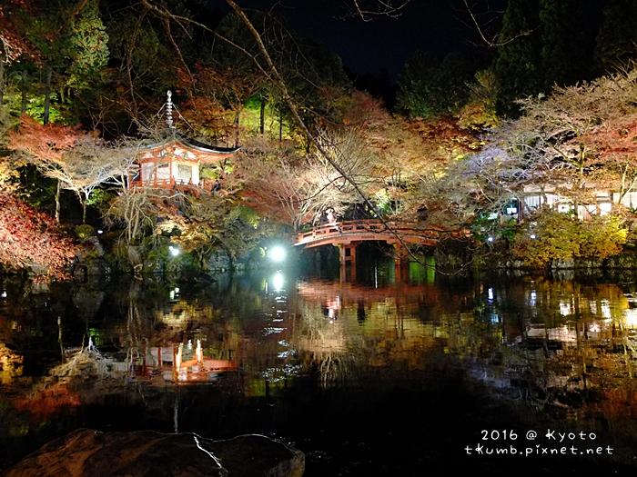 2016醍醐寺夜楓6.JPG