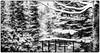 Winter Sanctuary (Astroredg) Tags: nb bw noiretblanc blackandwhite winter hiver gazebo veranda trees arbres patio firs snow snowy neige neigeux enneigé photographia contrasts contrastes restful reposant mediation sanctuary sanctuaire sanctum shrine temple japanese contemplation reverie spititual spirituel stfelixdekingsey canada quebec minimalist minimalisme minimalistic diffusedlight lumièrediffuse