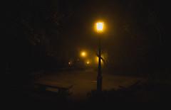 follow the light (Andrei-Dragos) Tags: night bench spooky sicily italy italia creepy park magical fear