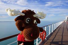 DSC01296 (The Crochet Crowd) Tags: crochetmoose amigurumi moose crochet doll alaska britishcolumbia thecrochetcrowd michaelsellick jeannesteinhilber danielzondervan crochetcruise mooseontheloose