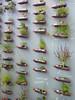 Suspended Bottles Herb Garden (irecyclart) Tags: bottle garden herb pots urbangardening verticalgarden