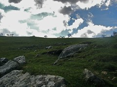 Up (_gonegal) Tags: cliff grass rocks cove limestone malham clif ilobsterit