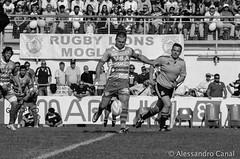 Stefan Basson Rovigo Rugby