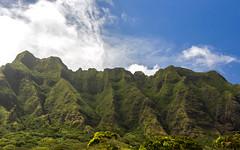 IMG_2521 (Jesko Helling) Tags: hawaii unitedstates kaneohe kualoaregionalpark koolaurange