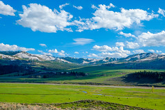 lamar valley (Lawrencepj) Tags: world park sky usa mountain green ngc grand national valley lamar yellowstone teton geographic bule