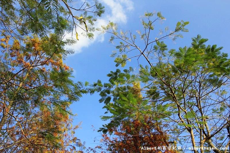 花蓮旅遊景點.雲山水