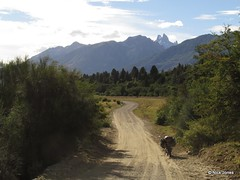5910158334463338002 (tfromthes) Tags: chile southamerica argentina ruta de bolivia lagos bariloche siete lacatedral motorcycletouring valledeluna hondaxr125 yamahaybr125 pasosanfrancisco motorcycletravel talesfromthesaddle wwwtalesfromthesaddlecom pasopircasnegras
