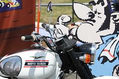 Joe du Joe Bar Team et sa Guzzi (nitot) Tags: paris france iron moto carole circuit bikers ironbikers