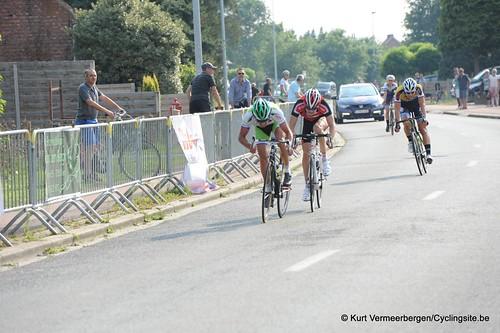 Geel Oosterlo  (342)
