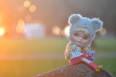 Beautiful Sunset....*Clover**