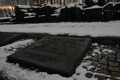 Auschwitz (032)