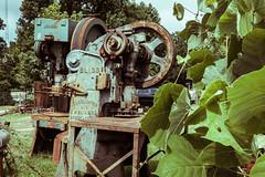 Machines and Kudzu (Lee Edwin Coursey) Tags: atlanta summer urban gritty goatfarm