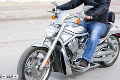 Harley davidson Tunisia 2014 (seifracing) Tags: traffic tunisia transport police bikes harley suzuki davidson motorbikes spotting services tunisie gsxr ecosse seifracing