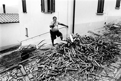Man and his wood (Sona