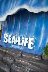 Sealife Aquarium. (LisaDiazPhotos) Tags: california aquarium sealife legoland lisadiazphotos