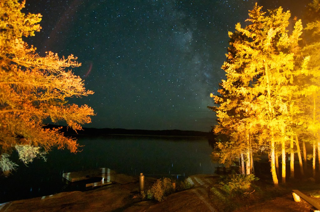 Milky Way and fire-lit trees
