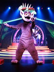 King Julien (meeko_) Tags: show africa vacation gardens tampa julien king florida live entertainment lemur characters operation dreamworks madagascar themepark buschgardens b