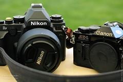 D and AE-1 : my first and last camera (HMeYe phOtO) Tags: lebanon canon nikon df ae1 sigma gear merrill dp3 bekaa dp3merrill