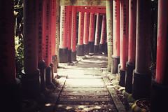 Kyoto + Inari + Torii | Japan, July 2014 (Sebastien BERTRAND) Tags: japan canon kyoto inari streetphotography streetphoto torii japon photoderue  eos40d canon40d fotomato sebfotomato sbastienbertrand sebastienbertrand