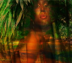 face in the park 2 (Sonja Parfitt) Tags: trees face photomanipulation bamboo