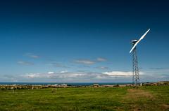 Cornwall, seaside (homogothicusindustrialis) Tags: sea england grass seaside cornwall skies wind meadow pasture minimalism turbine
