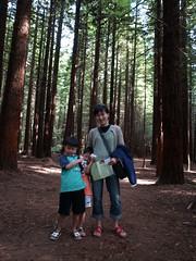 NZ Redwoods (dam.dong) Tags: travel jin nz redwoods min yuni e500