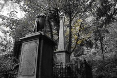 A matter of monumental.... (green_eyed_gaze) Tags: autumn cemeteries tree overgrown cemetery graveyard bristol sony victorian statues graves gravestone monuments sculptures totterdown arnosvale lucygaze