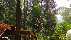 S1110018s (forum.linvoyage.com) Tags: phuketian phuketphotographernet forumlinvoyagecom httpforumlinvoyagecom outdoor phuket samui thailand krabi pattaya таиланд пхукет самуи тайланд краби паттая summer nature tropic
