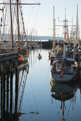DSCF0294 (Lostboy Photography) Tags: ocean water sailboat boats ships sails porttownsend sail pugetsound sailboats tranquil woodenboatfestival