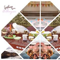 Grüße vom   Greetings from #Baldeneysee.   #ruhrpott #kiratontravel #travelblog #travel #traveltheworld #travelingram #enjoy #evening #camping #ruhe #entspannung #ignice #igtravel #igplace #instaplace #iggood #igtravel #igweather #ferkelontour #ferkel #pi