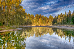 The lake (la1cna) Tags: autumn hst lake reflection color nature wald woods trees panasonic lx100 smallsensor ruralexplorer landscape