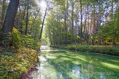 River (kinga.lubawa) Tags: river autumn jesień rzeka canon colors canon6d kolory kolorowe