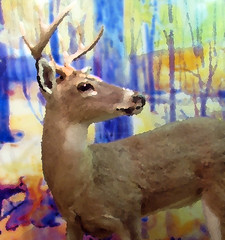 IMG_9333 (Mat_B) Tags: moraine hills state park nature natural area photography walk fall 2016 visitor center inside painting filter photoshop deer buck color side antler