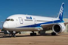 ANA / B788 / N787EX / KDMA (_Wouter Cooremans) Tags: kdma pimaair pimaairspacemuseum pimaairspace museum spotting spotter avgeek aviation airplanespotting arizona ana b788 n787ex