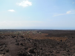 Old and New Lava (jimmywayne) Tags: hawaii hawaiicounty lava regrowth landscape oceanview kau old new