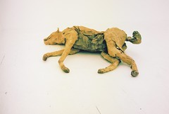 Dead dog (joe.ward123) Tags: dog london film canon f1 portra kodak 400 colour negative prime 50mm f14
