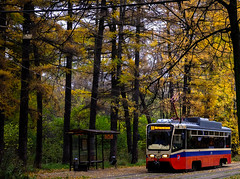 dgdr45 (olegmescheryakov) Tags: city street urban photography cityscape autumn sunset fall sun leaves light clouds green tree forest red beautiful yellow flower travel sky trees summer blue tram moscow russia park night architecture