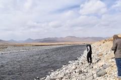 MAQ_0436 (MolviDSLR) Tags: deosair national park skardu gilgit baltistan northern areas pakistan brown bear wild life scenery landscape