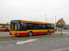 MAN NL263 (SAM), #60028, PKS Grodzisk Mazowiecki (transport131) Tags: bus autobus man nl263 sam zns pks grodzisk mazowiecki marki zbki