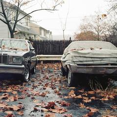 (.tom troutman.) Tags: bronica sqai film analog 120 6x6 80mm mediumformat nj kodak portra 160 autumn fall cedargrove