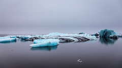 Glacier Lagoon (Elyssa Drivas) Tags: glacier lagoon glacierlagoon iceland travel ice blue cloudy darksky water iceblue jokulsarlon jokulsarloniceland southiceland south southern cold winter tourist nature landscape tourism