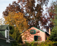Overwhelmed by foliage (pilechko) Tags: lambertville nj trees house town color