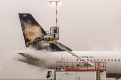 De-Icing of D-AISP Lufthansa Airbus A321-231 @ Frankfurt - Rhein-Main International (FRA / EDDF) / 07.12.2016 (oliver.holzbauer) Tags: deicing daisp lufthansa airbus airlines a321 airbus321 frankfurtairport fra eddf planespotter planespotting planes planephotography plane flugzeug flughafen luftfahrt lufhansagroup runway18 runway18de winter